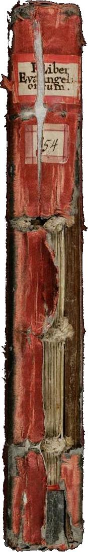 codex_von_der_seite_2_transp.png